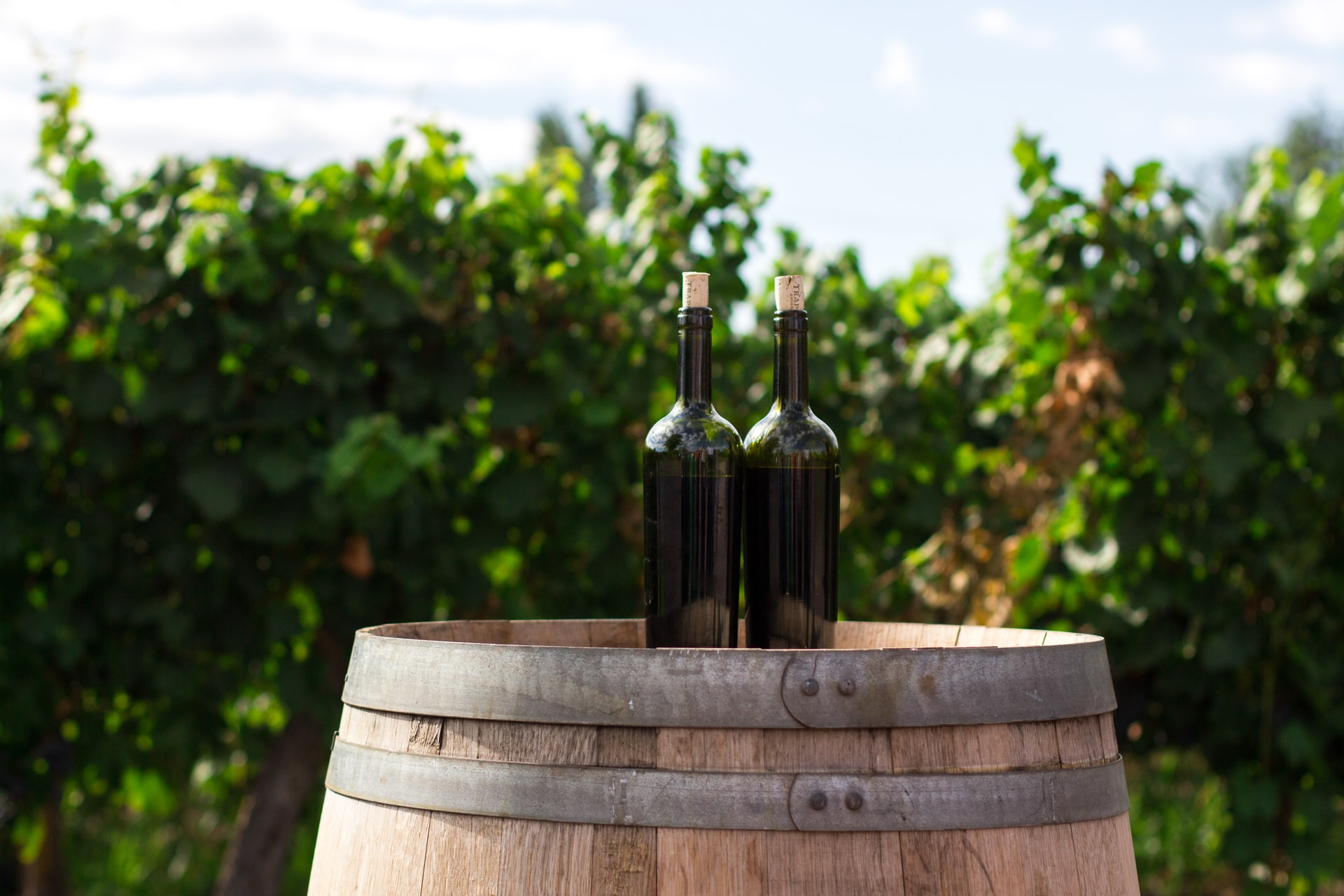 Dukam Wine Characteristics